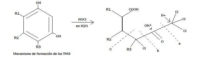 trihalometanos grafico